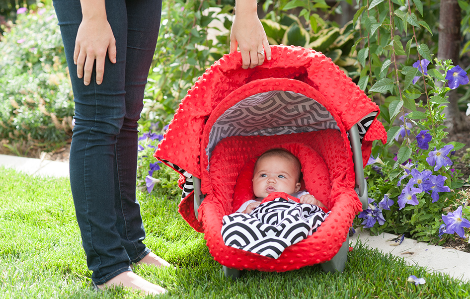 All · Original Canopies; Solomon Whole Caboodle. Continue Shopping  sc 1 st  Carseat Canopy & Canopy Couture - Solomon Whole Caboodle