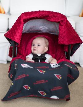 Arizona Cardinals Whole Caboodle
