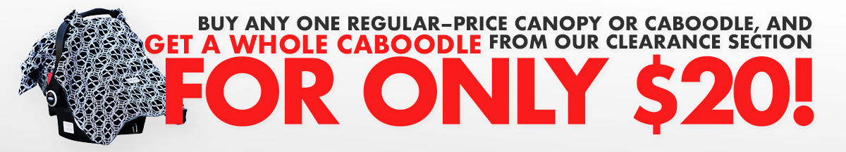 Buy any one regular priced canopy or caboodle, get a Whole Caboodle from our clearance section for only $20!