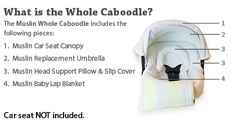 Dimensions Canopy 39.5 in. x 28.5 in.  sc 1 st  Carseat Canopy & Canopy Couture - Ivy Whole Caboodle